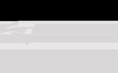 American Lumper Services